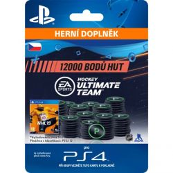 NHL 19 Ultimate Team - 12000 Hockey Points CZ (Hra PS4)
