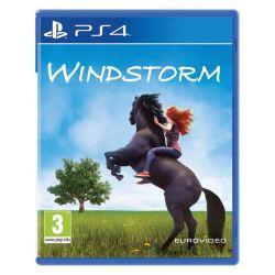 Windstorm (Hra PS4)